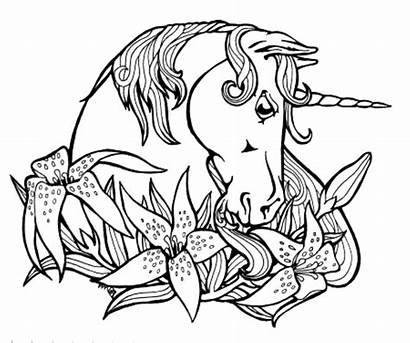 Unicorn Coloring Pages Children Forget Supplies Don