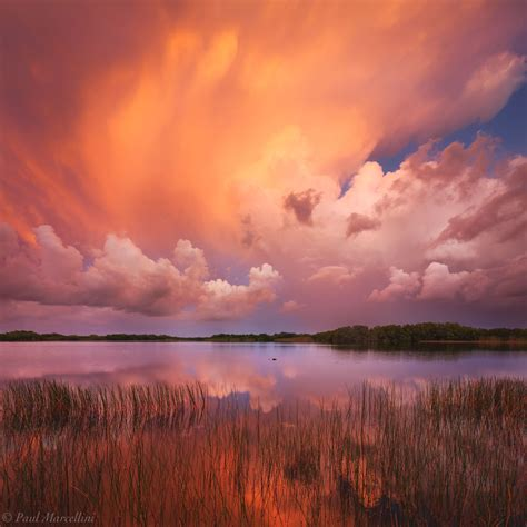 Florida Landscape Photography By Paul Marcellini