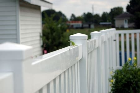 wood  vinyl fence pros  cons doityourselfcom