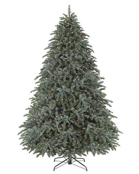25 best noble fir christmas tree ideas on pinterest