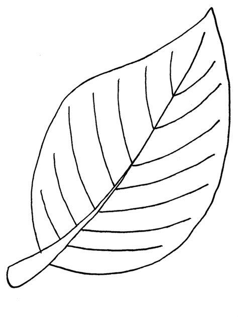 apple leaf template   clip art