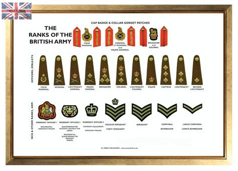 Or Ranks British Army Large A3 Ranks Of The British Army Poster Military