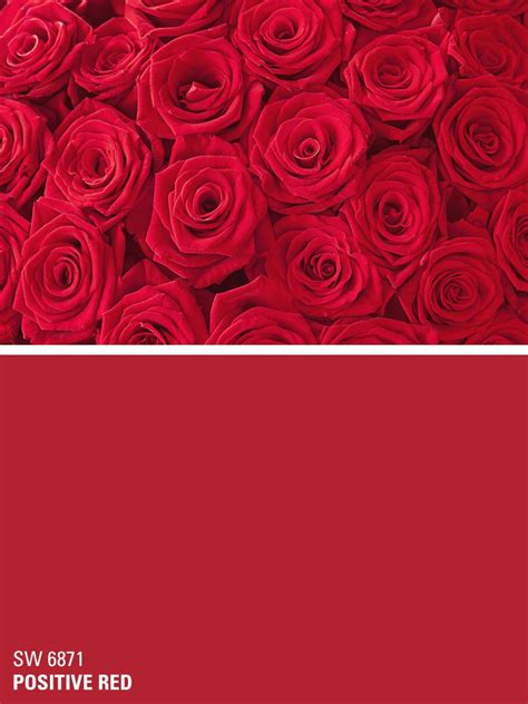 Sherwinwilliams Red Paint Color  Positive Red (sw 6871