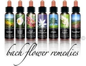 i fiori di bach a cosa servono cosa sono e a cosa servono i quot fiori di bach quot naturalworld