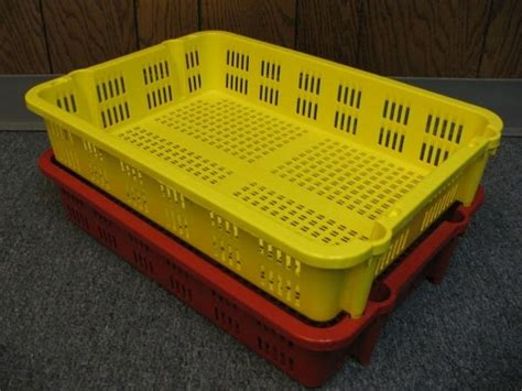 vegetable storage item no 698 fruit fish and vegetable harvesting and