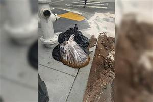 20 Pounds Of Poop Dumped On San Francisco Sidewalk