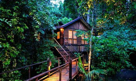 chambre cabane fille une cabane dans les arbres luxe nature et chic archzine fr