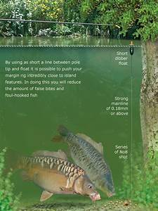 Prevent Foul Hooking Carp When Margin Fishing  U2014 Angling Times