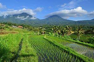 jatiluwih penebel tabanan wikipedia bahasa indonesia
