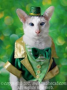 Happy St Patrick's Day, Kittehs! - Mousebreath! A magazine ...