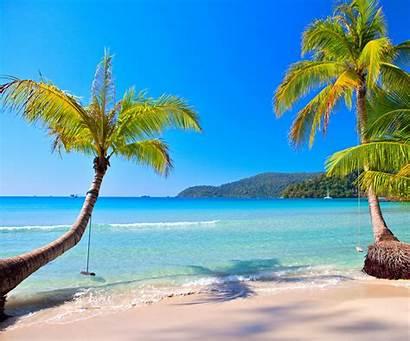 Tropical Paradise Beach Summer Ocean Island Vacation