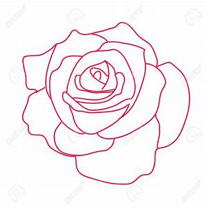 Dessin De Rose Rouge Dessin Rose Rouge Photo De Fleur Une Pensee