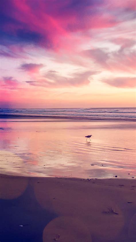 papersco iphone wallpaper mv sunset beach bird red