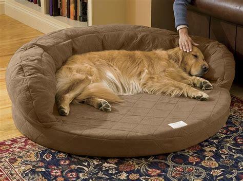 orthopedic dog beds super absorbent bolster dog bed