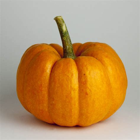 squash vegetable wonderful winter squash for whole food health think eat be healthy