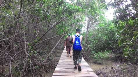 grantnsaipan wisata taman edukasi brebes