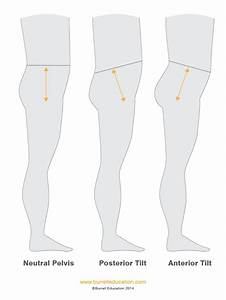 Massage   Soft Tissue Strategies For Deep Diastasis