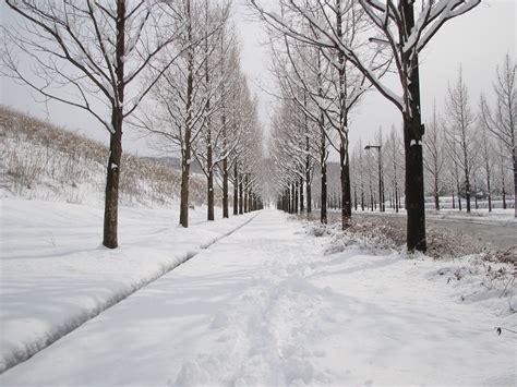 雪 に対する画像結果
