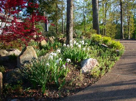 northwest landscaping ideas landscaping driveways and house landscape on pinterest