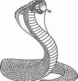 Snake Coloring Printable Animal sketch template