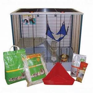 Pet Dumbo Rats and Large Cage FOR SALE ADOPTION from ...