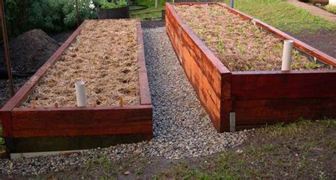 worms for garden beds 17 best images about garden wicking beds on pinterest gardens raised beds and minis