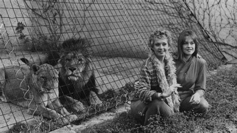 melanie griffiths wild childhood  lions