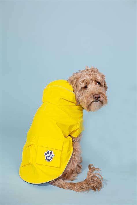 stylish spring fashion  dogs   yellow dog rain