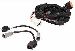 4r70w Wiring Harness   20 Wiring Diagram Images