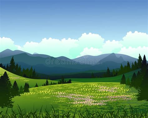 landscape  pine forest  mountain background stock