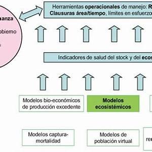 Pdf  Enfoque Ecosist U00e9mico Pesquero  Conceptos