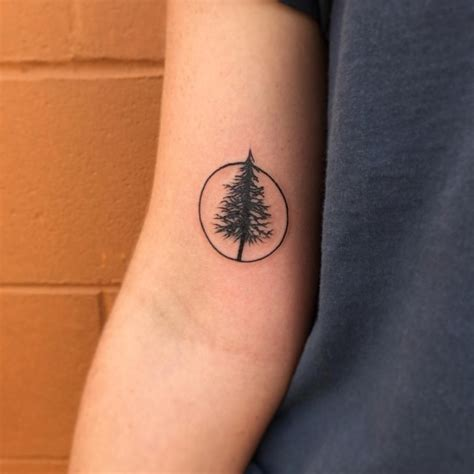 simple  easy pine tree tattoo designs