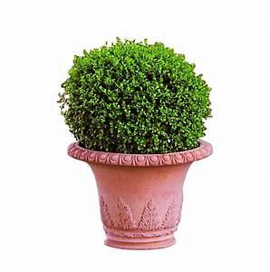Pot Terre Cuite Ikea : pot campana impruneta ~ Dailycaller-alerts.com Idées de Décoration