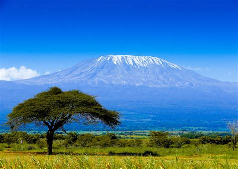 Mount is often used as part of the name of specific mountains, e.g. Mount Kilimanjaro may get a controversial cable car