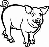 Pig Drawing Hog Clipart Coloring Head Clip Transparent Boar Wild Svg Line Mammals Ai Eps Clipartmag Webstockreview Lineart Pinclipart sketch template