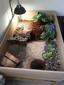 Tips: Interesting Sulcata Tortoise Habitat For Outdoor Pet ...