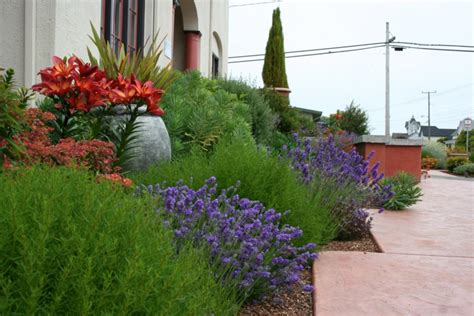 Gartenideen Mediterran by Mediterraner Garten Beispiele F 252 R Blumen Und Pflanzen