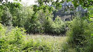 Adelaide Nature Reserve - Wikipedia
