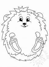Hedgehog Autumn Coloring Illustration Reddit sketch template