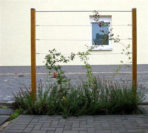 Klettergerüst Zum Stecken by Zaunbegr 252 Nung M Kletterpflanzen Auswahl Kultur Und