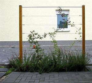 Rankgerüst Für Blauregen : zaunbegr nung m kletterpflanzen auswahl kultur und ~ A.2002-acura-tl-radio.info Haus und Dekorationen