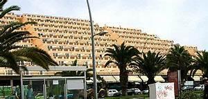 wohnen und schlafen auf fuerteventura allgemeine infos With katzennetz balkon mit palm garden fuerteventura jandia