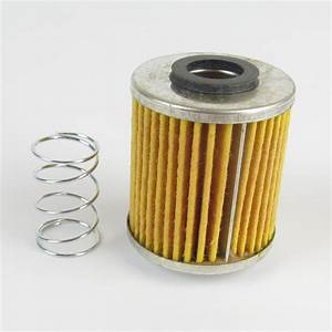 Fispa1 Fuel Filter Replacement Element  U0026 Spring  Small
