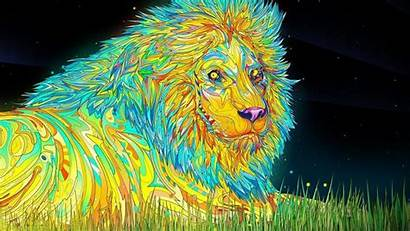 Trippy Cat Wallpapers Backgrounds Psychadelic