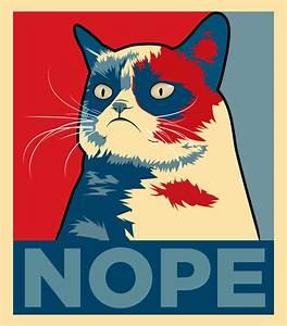 Grumpy Cat: Nope by ImWithStoopid13 on DeviantArt