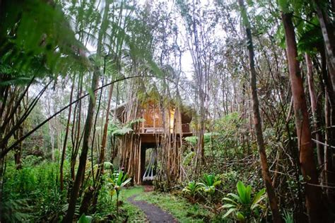 Tree House Airbnb Vacation Off The Grid In Hawaii S Most Popular Airbnb Tree