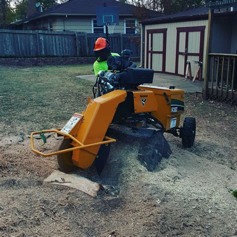 Stump Grinding  Stump Removal  Wichita Tree Service. Uc Davis Hospital In Sacramento. Minneapolis Printing Services. Car Insurance Additional Driver. Small Business Voip Reviews Call Me Princess. Life Of A Personal Trainer Opening Up An Ira. Online Paralegal Diploma Mutual Fund Advisors. Wheaton Cosmetic Dentistry Jeep Cherokee Car. Used Handicapped Vehicles Vein Surgery Laser