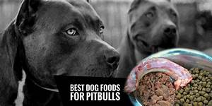 4 Best Dog Foods For Pitbulls Natural High Protein Low Fat