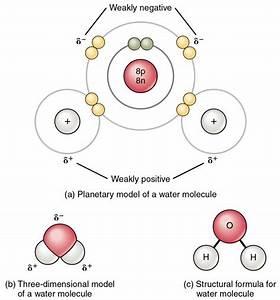 Chemical Bonds | Anatomy and Physiology I