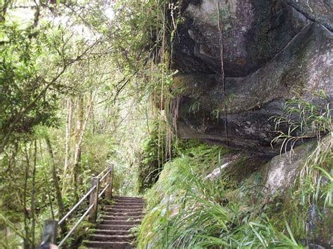 Parque Nacional de Itatiaia - Parte Baixa - ViscondeDeMaua ...